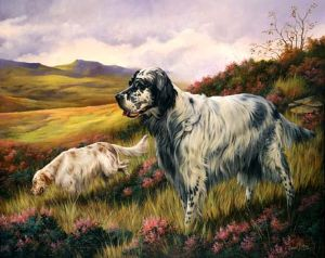 Limited Edition English Setter Print RMLE10